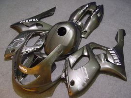 Yamaha YZF-600R 1994-2007 ABS Fairing - Others - Silver